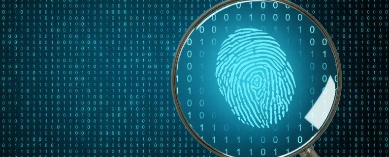 Pruebas digitales en juicio: Contenido de páginas webs